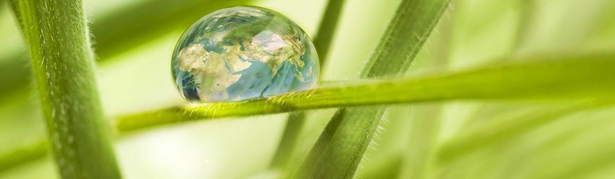 duurzaamheid-header